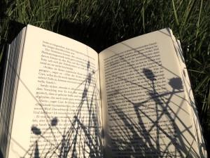 Lese-Liebe