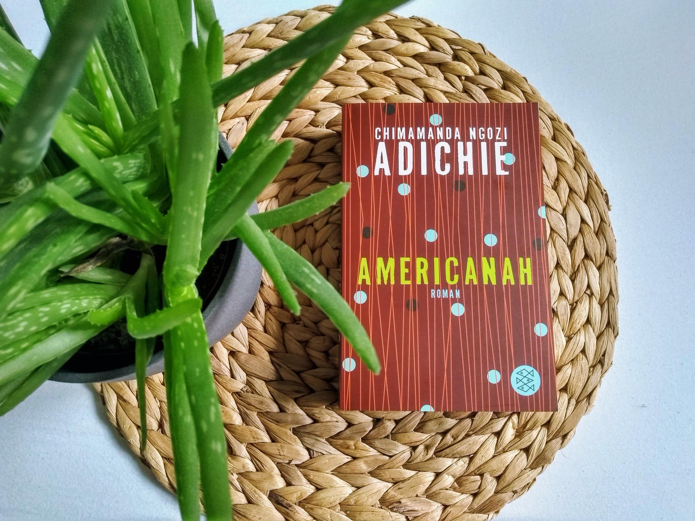 Americanah_Monatsrückblick